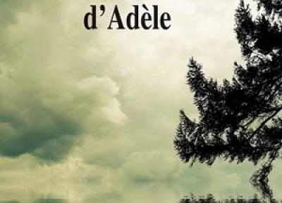 La médiation d'Adèle, le nouveau livre de Claire Bonnelle